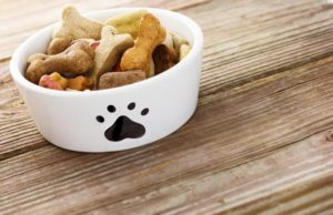 3 harmful ingredients in dog food